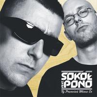 Avatar for the related artist Sokół