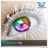 Avatar for the related artist Soundstorm
