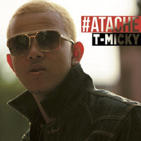 Avatar for the related artist T-Micky