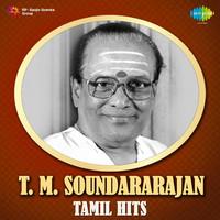 Avatar for the related artist T. M. Soundararajan