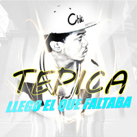 Avatar for the related artist Tepica