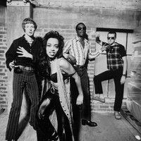 Avatar for the related artist The Brand New Heavies