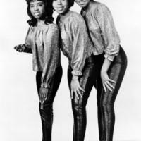 Avatar for the related artist The Dixie Cups