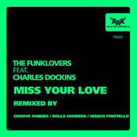 Avatar for the related artist The Funklovers