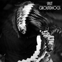 Avatar for the related artist The Groundhogs