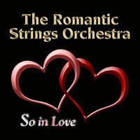 Avatar for the related artist The Romantic Strings & Orchestra