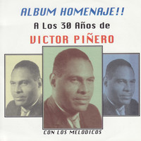Avatar for the related artist Victor Piñero