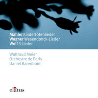 Avatar for the related artist Waltraud Meier