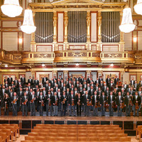 Image of Wiener Philharmoniker linking to their artist page due to link from them being at the top of the main table on this page