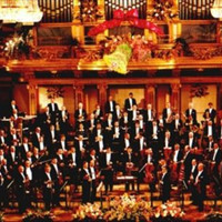 Avatar for the primary link artist Wiener Symphoniker