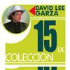 Thumbnail for the David Lee Garza - 15 de Colección: David Lee Garza link, provided by host site