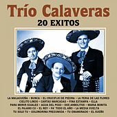 Thumbnail for the Trío Calaveras - 20 Éxitos link, provided by host site