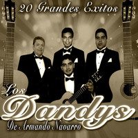 Thumbnail for the Los Dandy's - 20 Grandes Exitos link, provided by host site