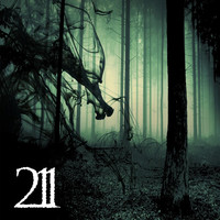 Thumbnail for the 211 - 211 link, provided by host site