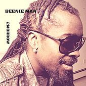 Thumbnail for the Beenie Man - 2morrow link, provided by host site