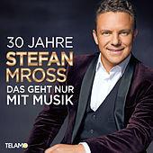 Thumbnail for the Stefan Mross - 30 Jahre: Das geht nur mit Musik link, provided by host site