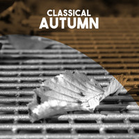 Thumbnail for the Cécile Chaminade - 6 Etudes de Concert, Op. 35: II. Autumn. Lento link, provided by host site