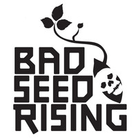 Thumbnail for the Bad Seed Rising - 606 link, provided by host site