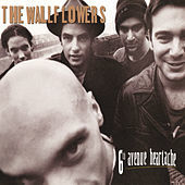 Thumbnail for the The Wallflowers - 6th Avenue Heartache link, provided by host site