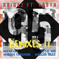 Thumbnail for the Abidaz - 95 (Remixes II) link, provided by host site