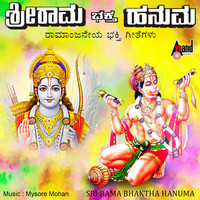 Thumbnail for the Sowmya - Aanandadhama Akalantha Naama link, provided by host site