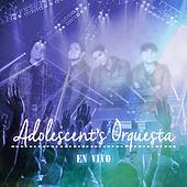 Thumbnail for the Adolescent's Orquesta - Adolescent's Orquesta En Vivo link, provided by host site
