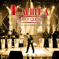 Thumbnail for the Kalimba - Amar y Querer (Homenaje a Las Grandes Canciones) link, provided by host site