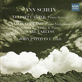 Thumbnail for the Ann Schein - Ann Schein Plays Carter, Copland, & Patitucci link, provided by host site