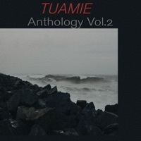 Thumbnail for the Tuamie - Anthology, Vol. 2 link, provided by host site
