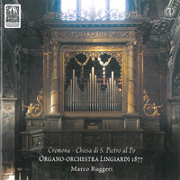 Thumbnail for the Georg Muffat - Apparatus musico-organisticus: I. Aria link, provided by host site