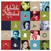Thumbnail for the Gloria Estefan - Arbolito de Navidad link, provided by host site