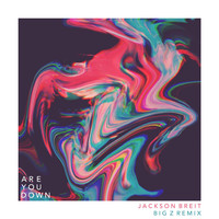 Thumbnail for the Jackson Breit - Are You Down (Big Z Remix) link, provided by host site