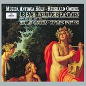 """Thumbnail for the Hans-Georg Wimmer - Aria """"Der Tag, der dich vordem gebar"""" (Basso) - Cantata, BWV 36c """"Schwingt freudig euch empor"""" - Aria """"Der Tag, der dich vordem gebar"""" (Basso) link, provided by host site"""