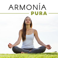 Thumbnail for the Meditation Awareness - Armonía Pura link, provided by host site