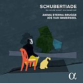 Thumbnail for the Stefano Veggetti - Arpeggione Sonata in A Minor, D. 821 (Arr. for Cello & Piano): II. Adagio link, provided by host site