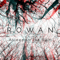 Thumbnail for the Rowan - Asleep in the Rain link, provided by host site