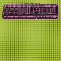 Thumbnail for the Róisín Murphy - Assimilation link, provided by host site