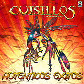 Thumbnail for the Banda Cuisillos - Autenticos Exitos link, provided by host site