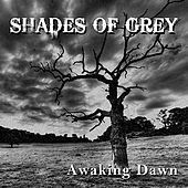 Thumbnail for the Shades of Grey - Awaking Dawn link, provided by host site