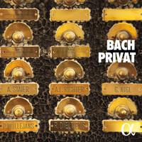 Thumbnail for the Johann Sebastian Bach - Bach Privat link, provided by host site