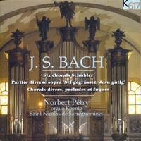 Thumbnail for the Johann Sebastian Bach - Bach: Schübler-Chorales, Preludes & Fugues & Chorales link, provided by host site