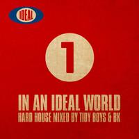 Thumbnail for the BK - Back 2 Basics - Album Edit link, provided by host site