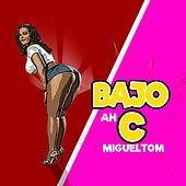 Thumbnail for the Migueltom - Bajo Ah C link, provided by host site
