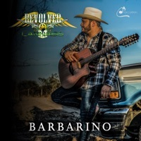 Thumbnail for the Revolver Cannabis - Barbarino link, provided by host site