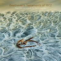 Thumbnail for the Ludwig van Beethoven - Beethoven's Testaments of 1802 link, provided by host site