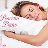 Thumbnail for the Peaceful Piano - Before I Met You link, provided by host site