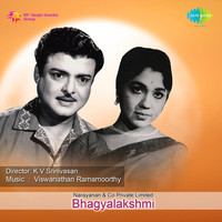 Thumbnail for the Viswanathan Ramamoorthy - Bhagyalakshmi (Original Motion Picture Soundtrack) link, provided by host site