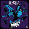 Thumbnail for the Illskillz - Birdz link, provided by host site