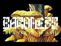 Thumbnail for the Baroness - Blankets of Ash link, provided by host site