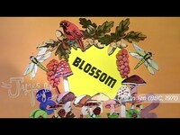 Thumbnail for the James Taylor - Blossom (One In Ten) link, provided by host site